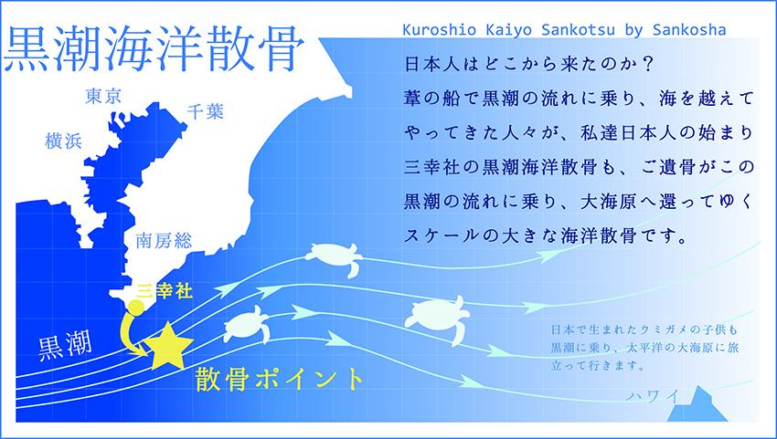 kuroshiokaiyousankotsu